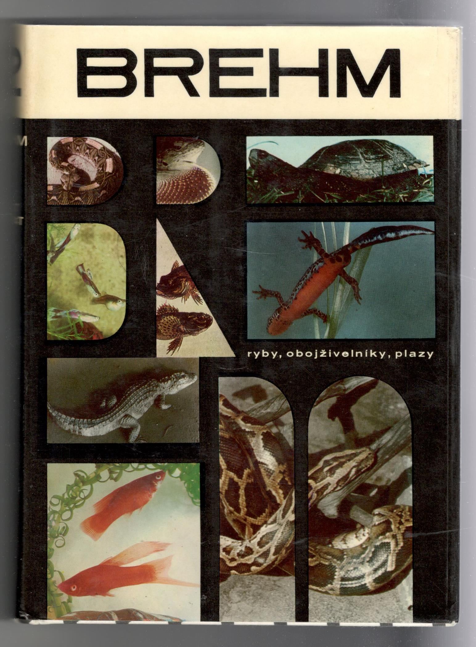 Brehm - Život zvierat 2 / Ryby, obojživelníky, plazy (slovensky)